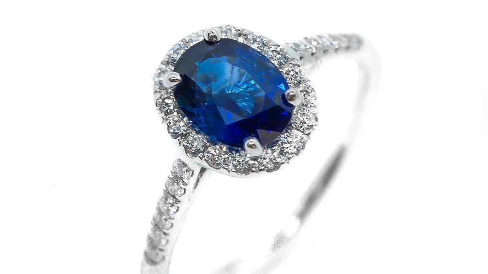Ceylon Sapphire Halo Ring | HR7555 | 1.21CT w/ .24CT dia | 2900K