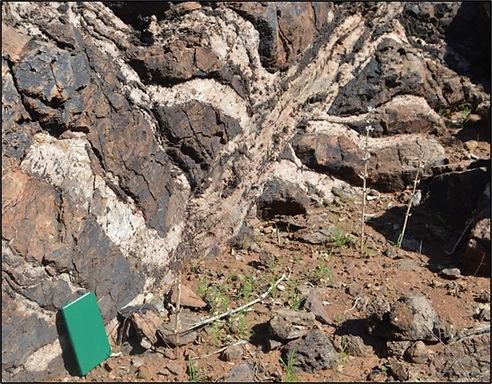 Lofdal carbonatite dykes exploit existin