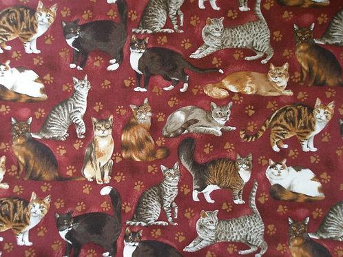 Aristocratic Cats