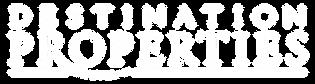 DP Logo-01.png