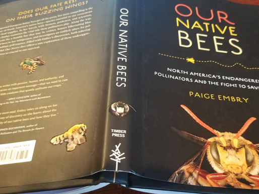 Our Native Bees by Paige Embry