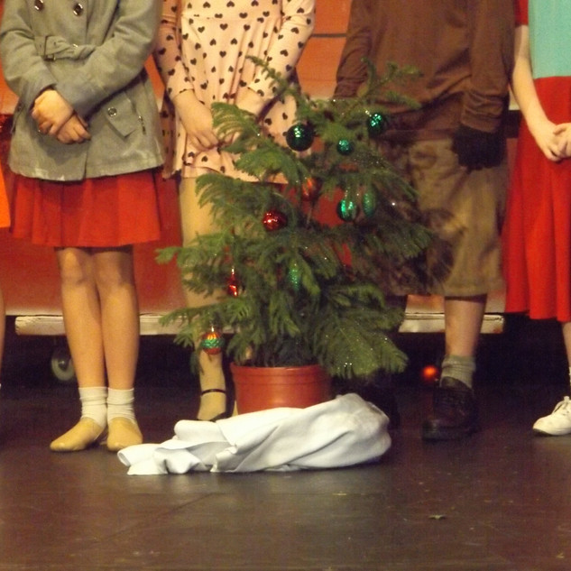 """""""I never thought it was such a bad little tree."""""""