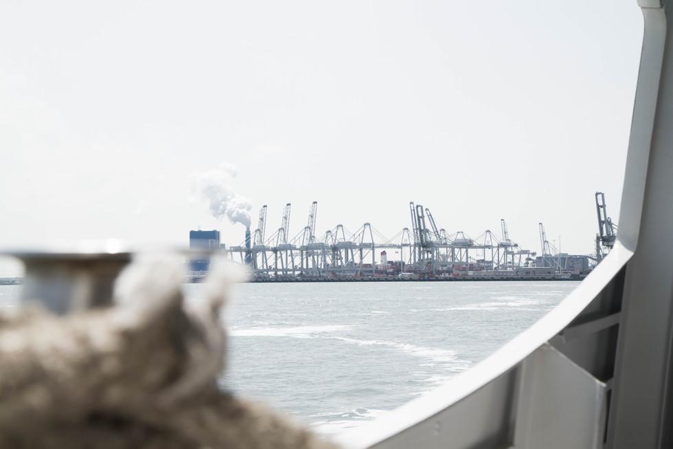 Vue sur les grues - port de Rotterdam