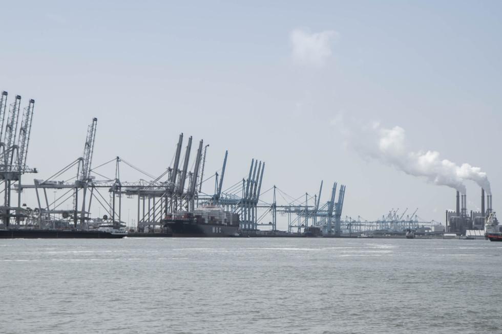 Grues du port et usines pétrochimiques - port de Rotterdam