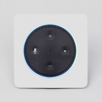 Vail Amp - Voice Control Systems