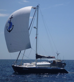 Flica Catamaran for sale in Langkawi