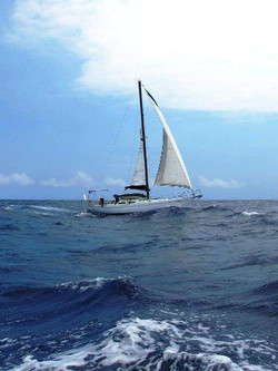 maia ocean