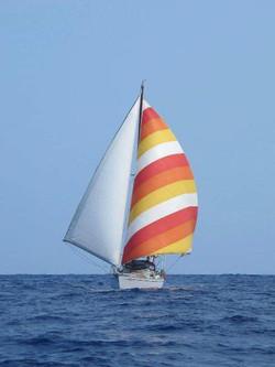 maia on sailing2