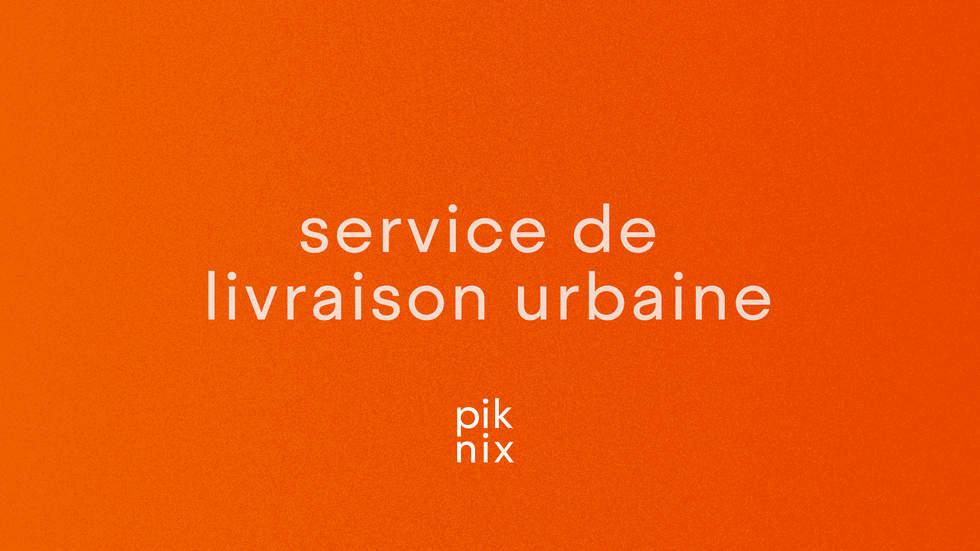 Piknix_Logo copie_Plan de travail 1 copi