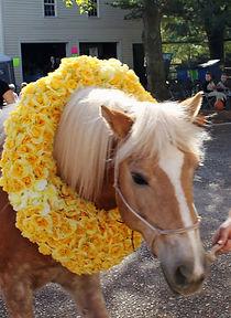 "Team Velvet Therapy Horse ""Presious"""