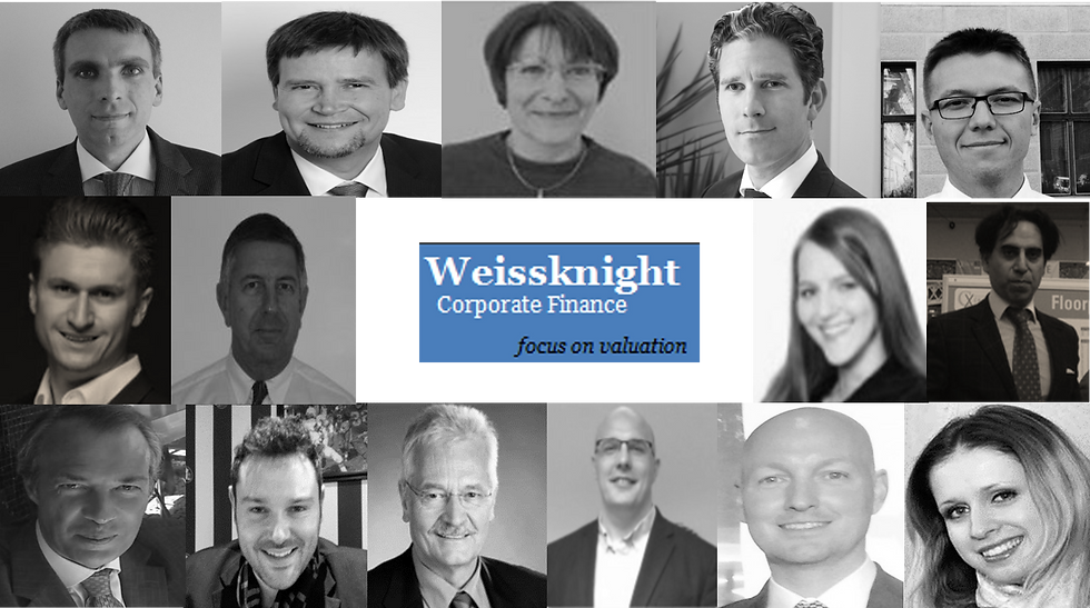 Weissknight Team 2020.png