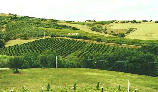 Country house la foggetta b b for Piani seminterrato gratuiti
