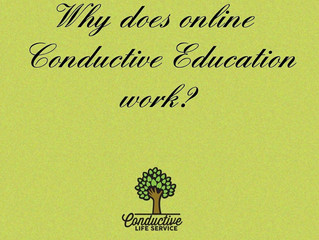 Why does online conductive education work?