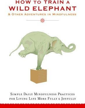 How to Train a Wild Elephant - Jan Chozen Bays