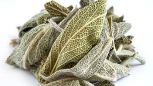Salie - Salvia officinalis 100gr