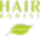 Logo-Hairborist-sites-Retina.png