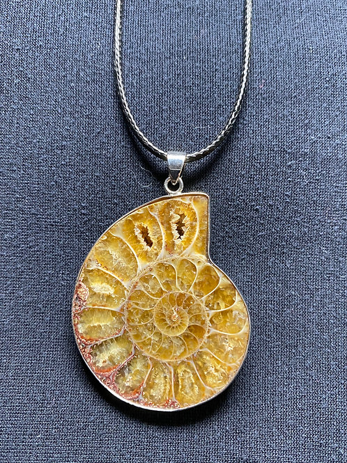Ammonite Fossil Necklace