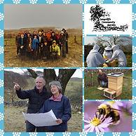 community Garden collage.jpg