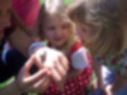 Kindergarten_Kreuzschwestern_Wels.jpg