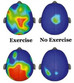Research Shows How Critical Exercise is to Academic Performance