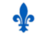 293-2931750_quebec-nordiques-fleur-de-ly