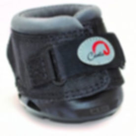 CLB-w-Cavallo-Logo-HIGH-RES-e15176037923