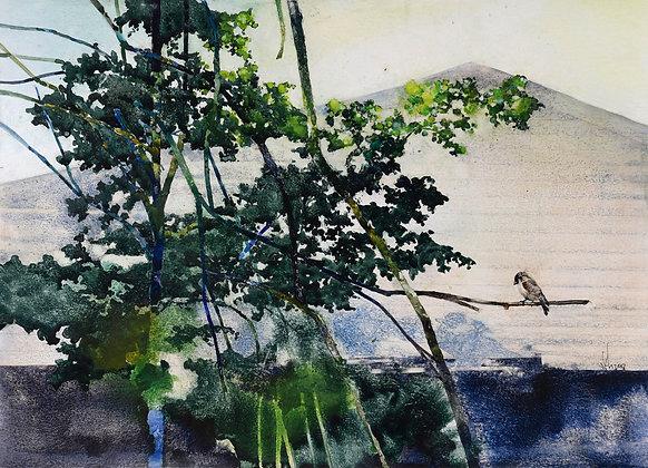 A NEW DAY (2018) by Chong Kah Wah