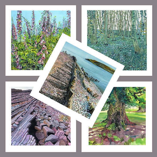 Greetings Card Pack A. West Somerset