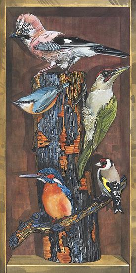 Birds of the World, British Highlights , Bird Print