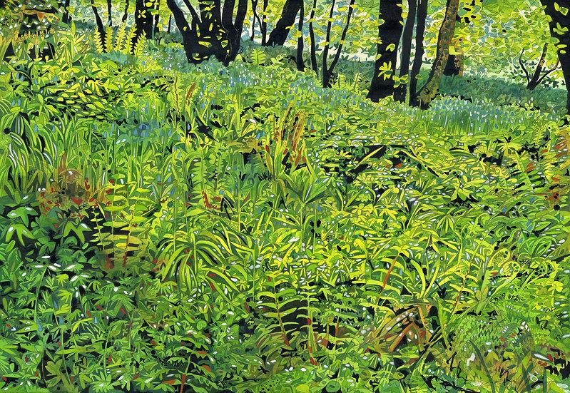 Lamorran Woods 2,  Print