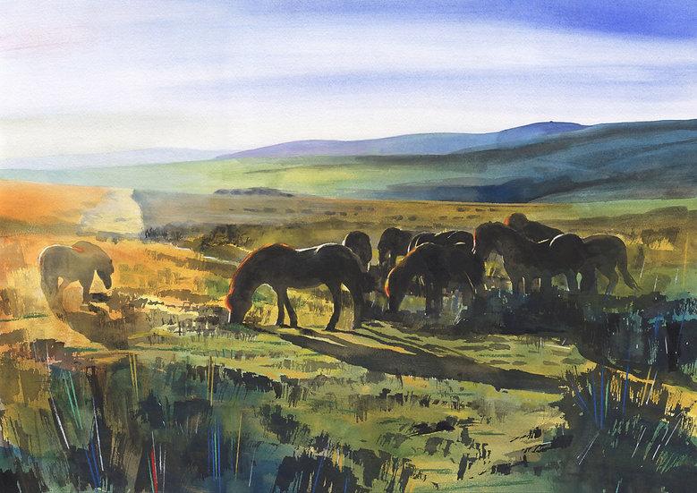Exmoor Ponies 3, Exmoor,  Original Watercolour Painting