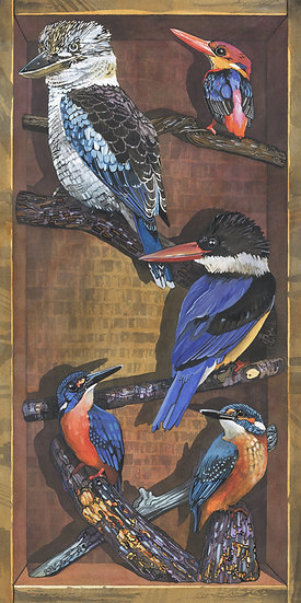 Kingfishers of the World, Bird Print