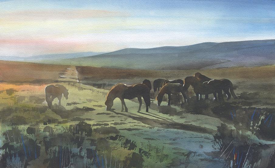 Exmoor Ponies, Exmoor Original Watercolour Painting
