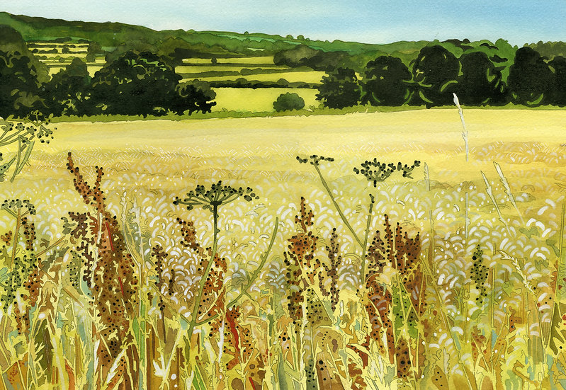 Wheat Field, Somerset Print