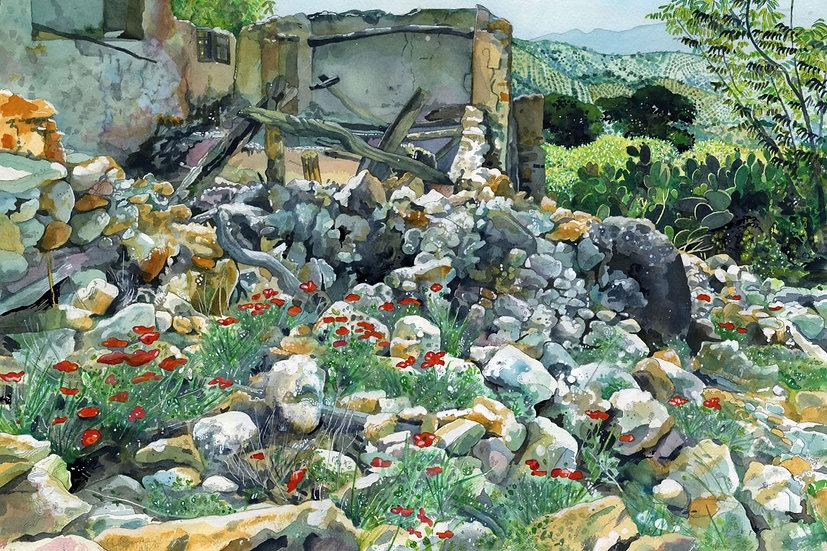 Spanish Ruin with Poppies, Original Watercolour Painting