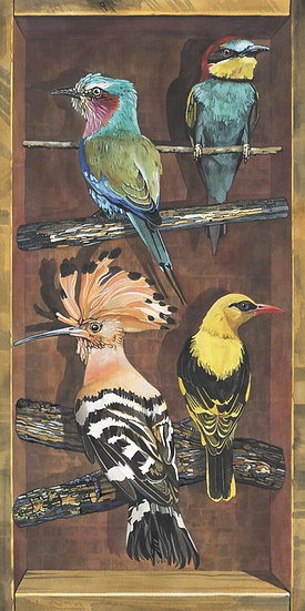 Birds of the World, European Highlights, Bird Print