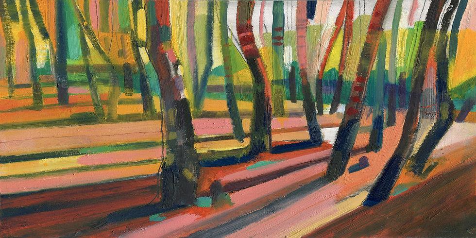 Birch Forest , Exmoor  Print