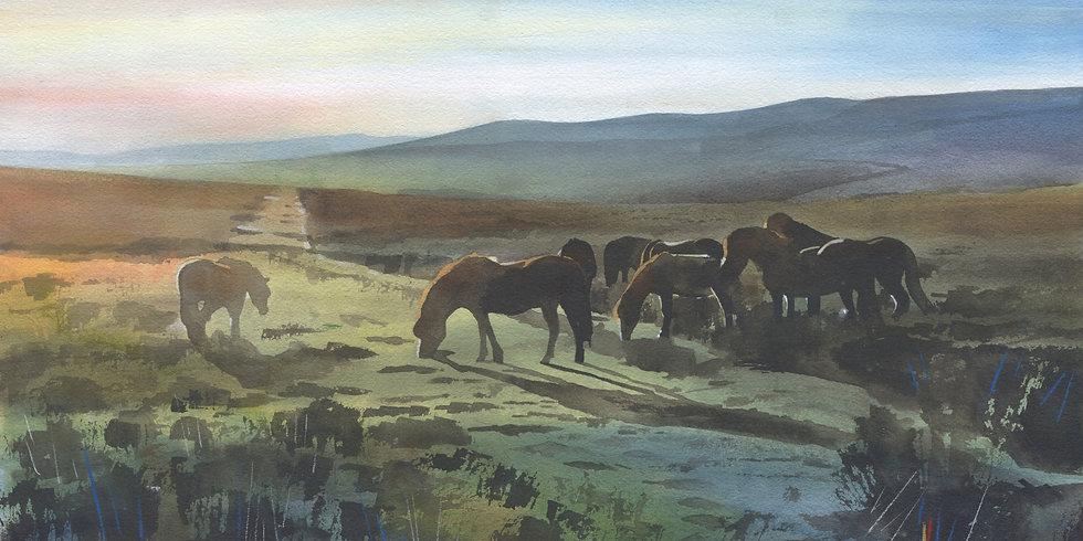 Exmoor Ponies 2, Exmoor Print