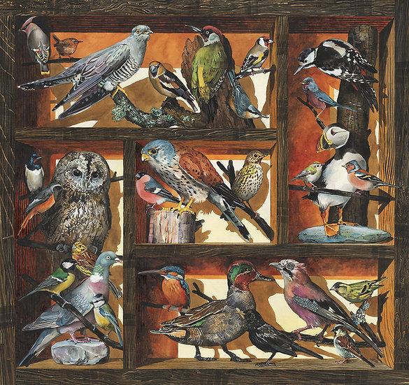 Birds of Britain, Bird Print