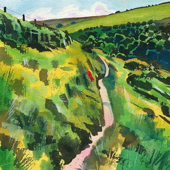 Rugged Coast Path 8, Exmoor Print