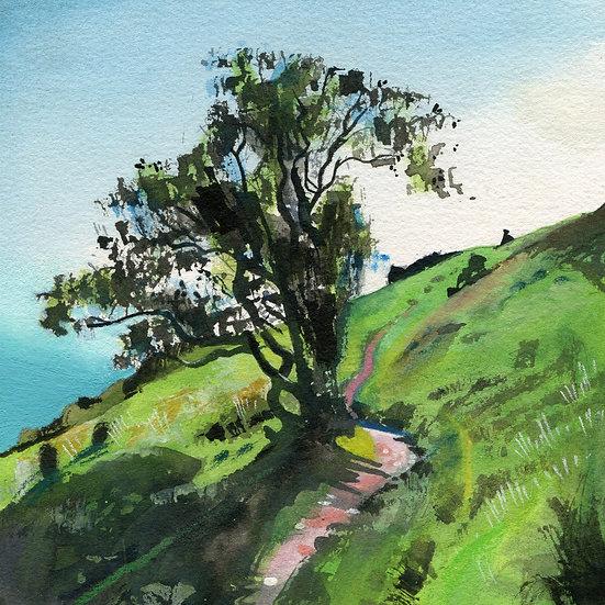 Rugged Coast Path 11, Exmoor Print