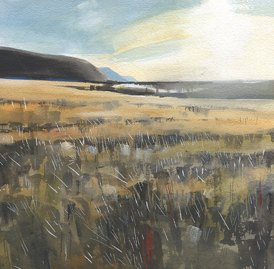 Exmoor, Porlock Marsh 4, Original Watercolour Painting