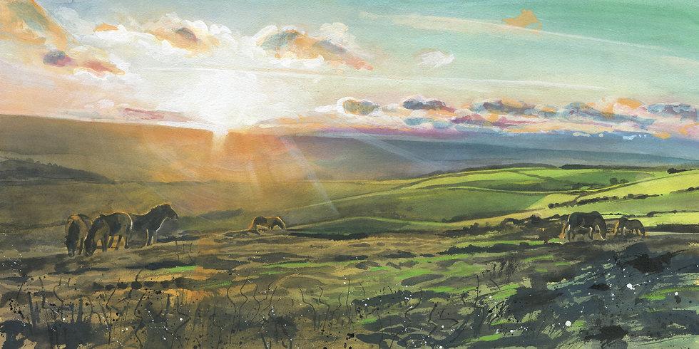 Exmoor Ponies, Exmoor Print