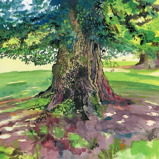English Oak Tree, Original Watercolour Painting