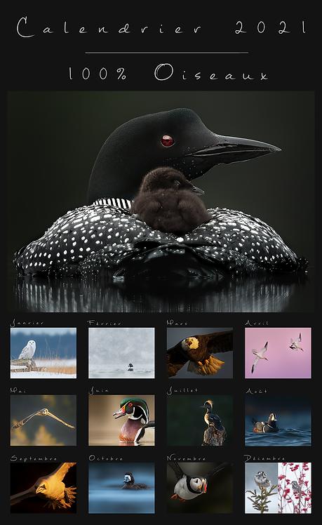 100% Oiseaux - Calendrier 2021
