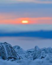 Paysage_montagne_1_2021.png