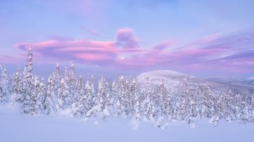 Paysage_montagne_5_2020.png