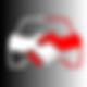 bc logo color grey autorentaltallinn.png