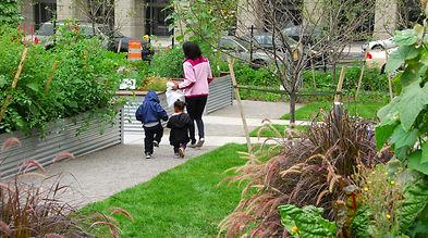 chinese kids urban garden.jpg