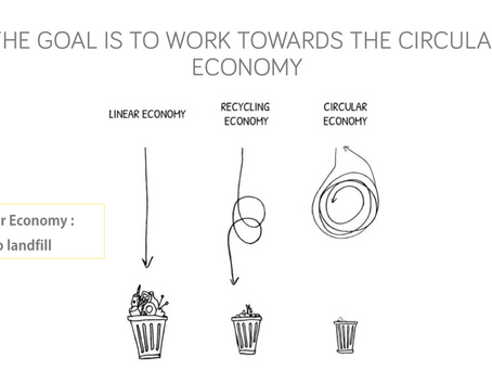 Why should companies implement a Zero Waste Strategy?